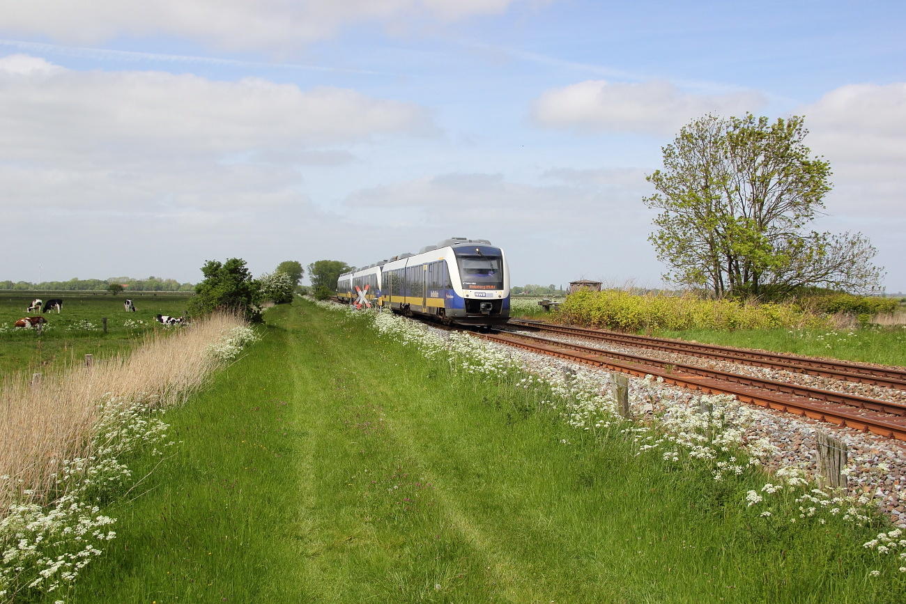 http://www.nachtbahner.de/Fotos/2015-05-24%20Jadebahn%20bei%20Ellenserdammersiel/k-IMG_2476%20Jadebahn%20bei%20Ellenserdammersiel%2023.05.15%20(2).JPG