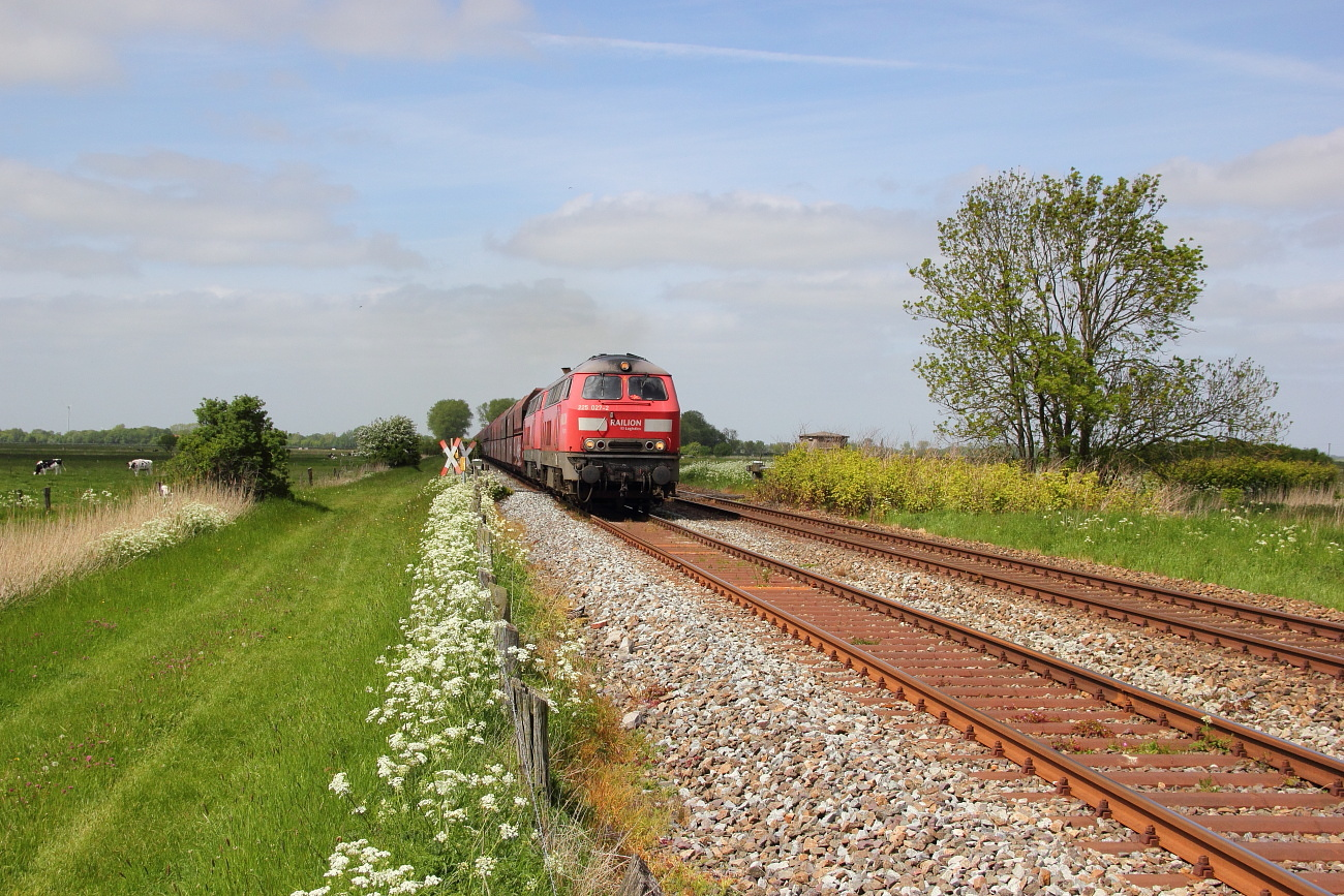 http://www.nachtbahner.de/Fotos/2015-05-24%20Jadebahn%20bei%20Ellenserdammersiel/k-IMG_2486%20Jadebahn%20bei%20Ellenserdammersiel%2023.05.15%20(3).JPG