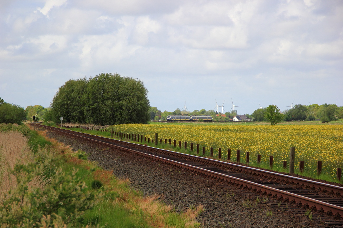 http://www.nachtbahner.de/Fotos/2015-07-10%20Nordseebahn%20Teil%201/k-IMG_2839%20Nordseebahn%2026.05.15%20(5).JPG