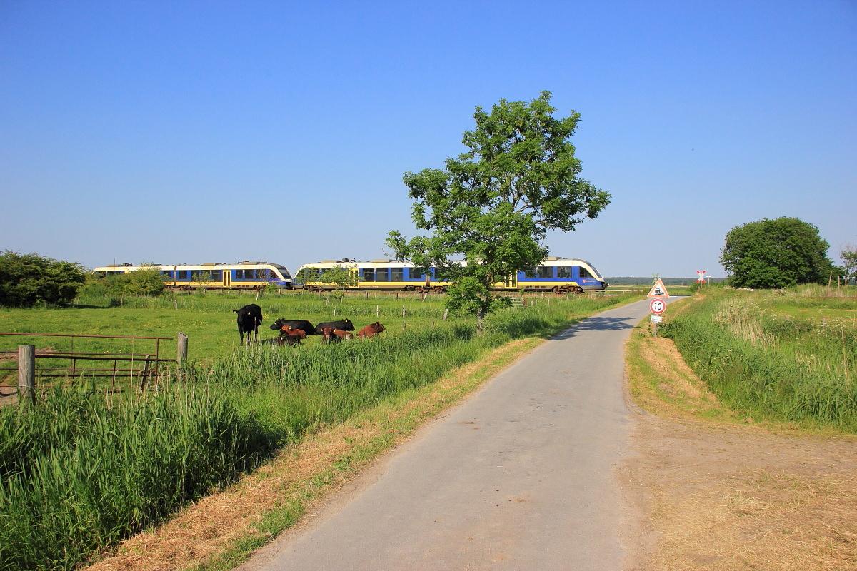 http://www.nachtbahner.de/Fotos/2015-07-10%20Nordseebahn%20Teil%202/k-IMG_3491%20Nordseebahn%2012.06.15%20(6).JPG